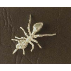 Charm St. Silver Ant 1.36 gram