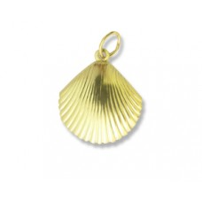 Charm Large Shell 14K Gold Filled