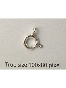 St.Silver Spring Ring 8mm w/open ring