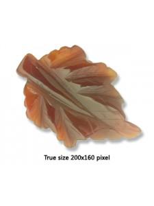 Carnelian Leaf Pendant #3 40x60mm