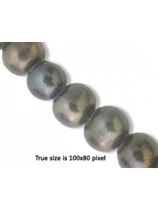 Freshwater Pearl 10mm (2mm H)Black 16in