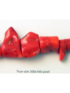 Red Coral (Dyed) large sticks 16 inch st