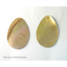 Brown Lip Shell Teardrop 44x30mm