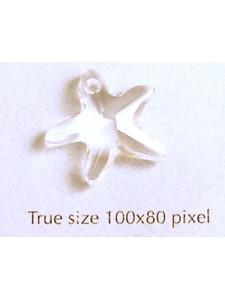 Swar Starfish 16mm Clear